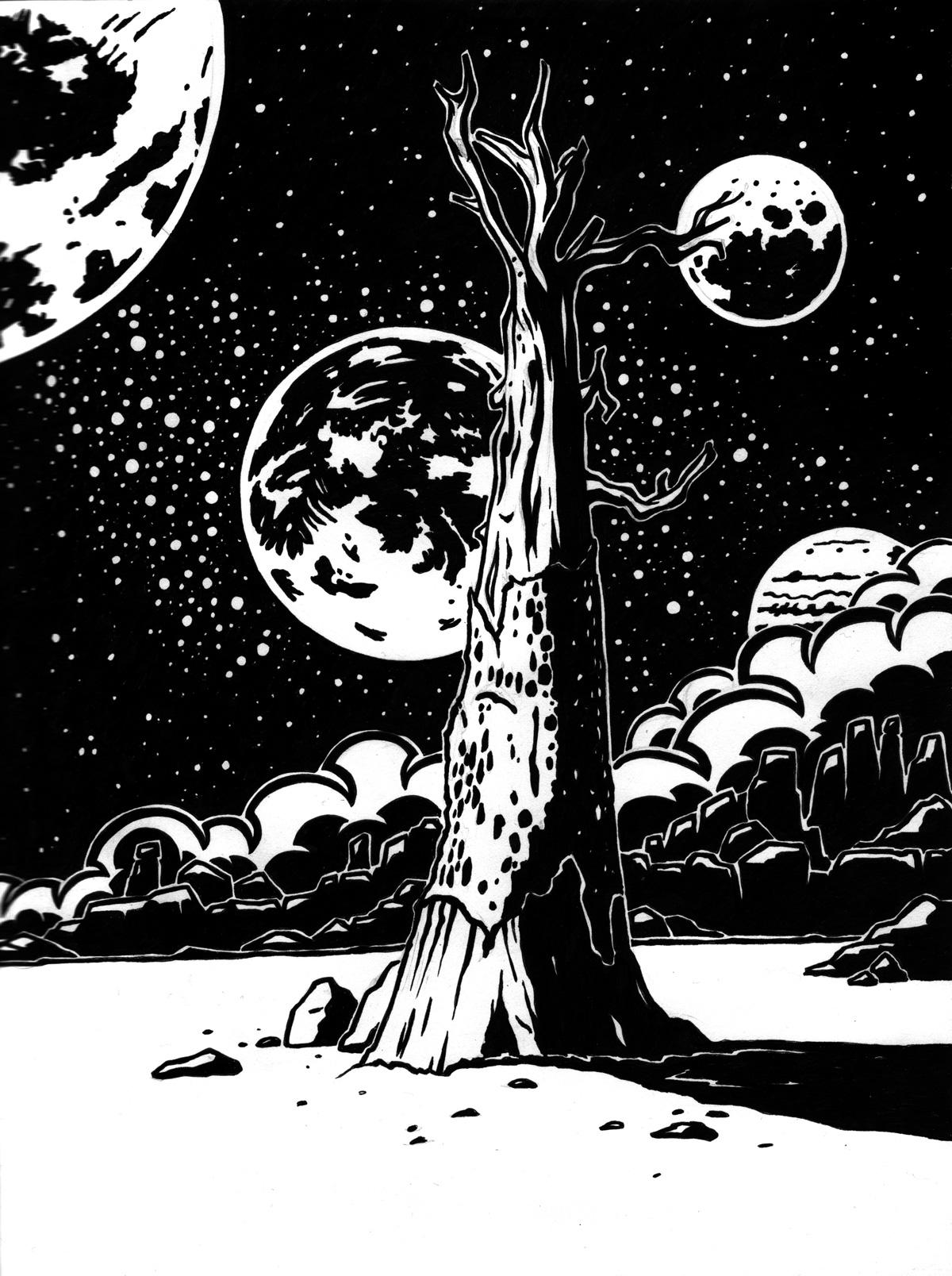 Soleil noir, arbre